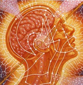 Le credenze limitanti, psicologia quantistica