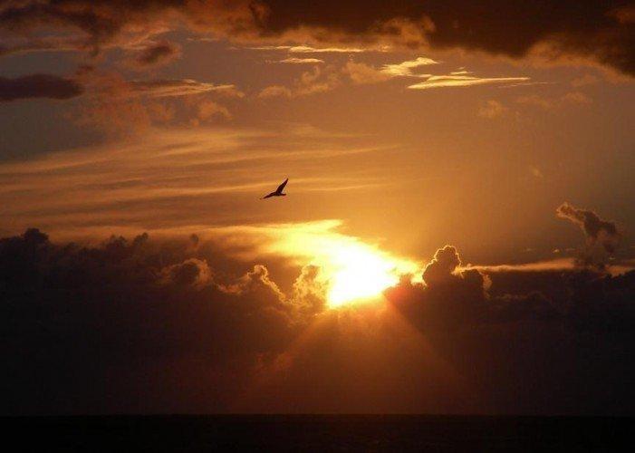 Sole, tempesta, amicizia, vita, presenza
