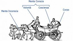 La metafora della carrozza