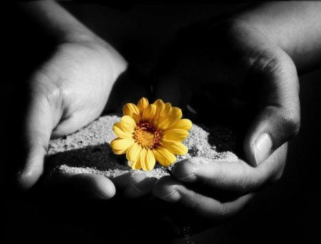 Raccogliere amore, gioirne e rimetterlo in circolo